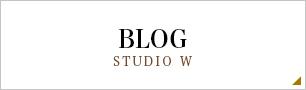 BLOG STUDIO W